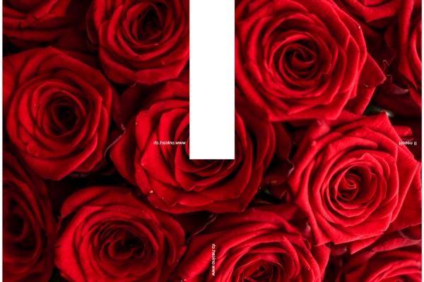 00-valentin-2178A92A0-3F9C-B58B-D0F9-434CFE127B0A.jpg